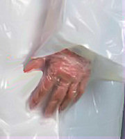 PW-A941 Disposable PE Glove