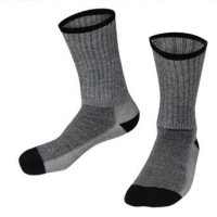 0031 Performance Sock